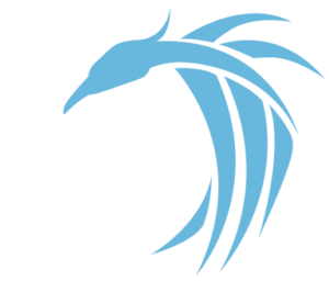 BSM Industrial Maintenance logo with white text